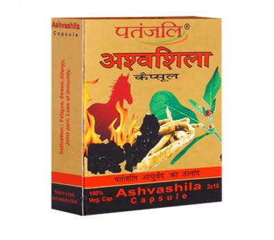 Ashvashila Patanjali Ашвашила Патанджали, 20 кап